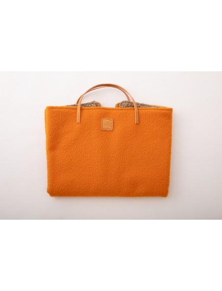 Steve Casentino Orange  2.8 design for dogs